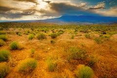 Utah landscape. A view a plateau in Utah from La Verkin Overlook road Royalty Free Stock Image