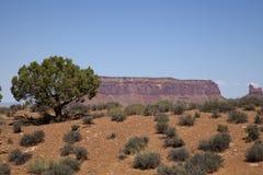 The Utah Landscape Stock Photo