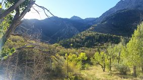 Utah mountains in the spring. Wasatch front mountains with canyon view just beautiful Royalty Free Stock Images