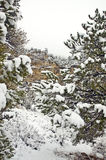 Utah Mountains in Winter Royalty Free Stock Photography