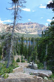 Utah's Alpine Wilderness Royalty Free Stock Photo