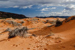 Utah`s pink sand dunes with footprints; mountains in the distance. Stock Image