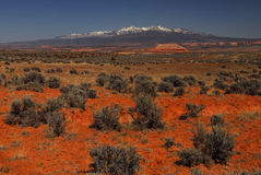 Utah sage Brush. Sage brush and La Salle mountains royalty free stock photo