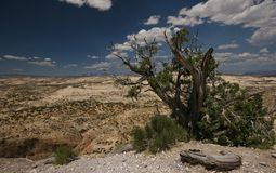 Utah valley. Valley betwen moab and bryce canyon with beautiful clouds Royalty Free Stock Photography
