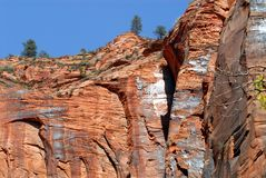 Utah Zion Beautiful Red Cliff Faces mit blauem Himmel lizenzfreies stockfoto