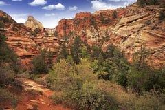 Utah Zion Landscape Imagen de archivo libre de regalías