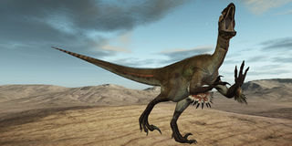 Utahraptor ostrommayorum-3D Dinosaur Royalty Free Stock Images