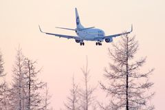 UTair Boeing 737 Royalty Free Stock Photography