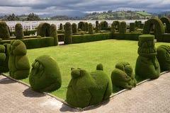 utarbetad topiary i den Tulcan Ecuador kyrkogården Royaltyfri Fotografi