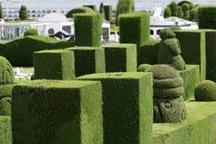 Utarbetad topiary i Tulcan Ecuador Arkivfoton