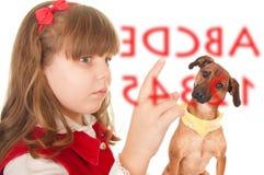 utbildade hundflickor Royaltyfri Bild