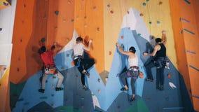 Utbildande folk i en klättramitt, slut upp stock video