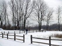 utbildande vinter Royaltyfria Bilder