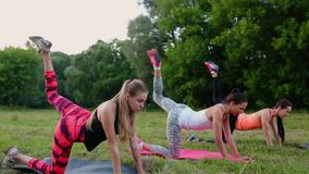 Utbildning för perfekta höfter Grupp av idrotts- unga kvinnor i sportswearen som gör fysiska övningar med lagledaren i gräsplan arkivfilmer