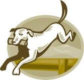 utbildning för retriever för hundhäckbanhoppning retro royaltyfri illustrationer