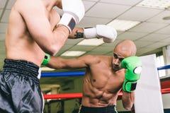 Utbildning för två boxare Fotografering för Bildbyråer