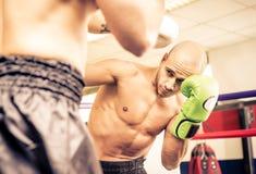 Utbildning för två boxare Arkivfoton