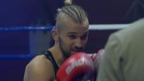 Utbildning stående av den härliga boxaremannen i röda handskar på boxningsringen med ett motstående slut upp på sportklubban stock video