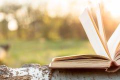 Utbildnings- och vishetbegreppet - öppna boken under solljus Arkivbild