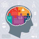 Utbildningsinfographicsbegrepp royaltyfri illustrationer