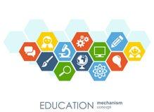 Utbildningsnätverk Integrerar abstrakt bakgrund för sexhörningen med linjer, polygoner, och plana symboler Förbindelsesymboler fö Vektor Illustrationer
