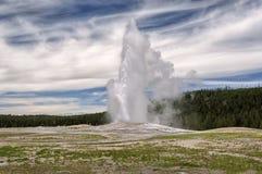 Utbrott av den gamla trogna geyseren på den Yellowstone nationalparken Royaltyfria Bilder