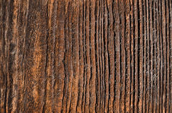 Utdated wooden board with fading brown spots and cavities Royalty Free Stock Photos