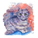 Utdragen illustration för vattenfärghand med den gråa strimmig kattkatten på den mångfärgade aquarellebakgrunden vektor illustrationer