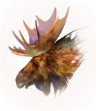Utdragen isolerad djur head älg stock illustrationer