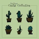 Utdragen kaktussamling för hand i grön bakgrund stock illustrationer