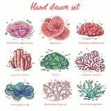 Utdragen koralluppsättning för hand stock illustrationer