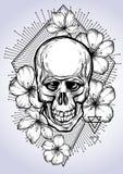 Utdragen mänsklig skalle för realistisk hand med blommor av äpplet och sakral geometri Vektorillustration i bohostil arkivbilder