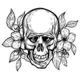 Utdragen mänsklig skalle för realistisk hand med blommor av äpplet Vektorillustration i bohostil Esoteriskt mystikersymbol utmärk royaltyfria foton