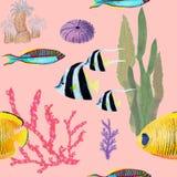 Utdragen sömlös modell för hand i naturlig beståndsdel för vattenfärghavsvärld Korallskal fiskar p? rosa bakgrund stock illustrationer