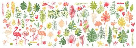 Utdragen tropisk blomma- och flamingosamling för hand royaltyfri illustrationer