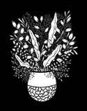 Utdraget blom- klotter för hand med vasen Färga sidor för bok Vektorlinje konst vektor illustrationer