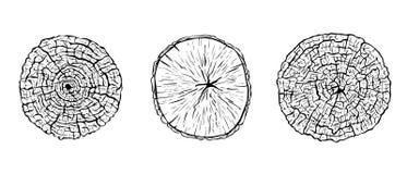 Utdragna skissade klippta trädstammar för hand royaltyfri bild