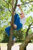 Сute boy climbing on tree Royalty Free Stock Photos
