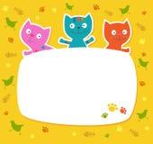 ?ute gekleurde katten. Stock Afbeeldingen