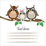 Сute owls on a tree branch with space for text. Royalty Free Stock Images