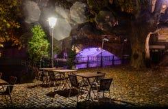 Uteliv tänder ensamma tomma restaurangtabeller under staden i träden på bakgrunden av den upplysta bron Royaltyfria Bilder