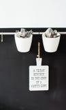 Utensílios da cozinha que penduram em uma parede Imagem de Stock