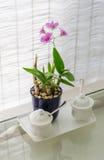 Utensilios de cerámica con la decoración de la flor Foto de archivo libre de regalías