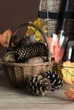 Utensilios de jardinería para el otoño Imágenes de archivo libres de regalías