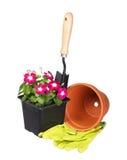 Utensilios de jardinería y flores con el pote y guantes aislados en blanco Foto de archivo libre de regalías