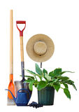 Utensilios de jardinería y planta Foto de archivo