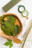 Utensilios para hacer las hojas de la flor de papel Foto de archivo