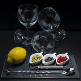 Utensils and ingredients to prepare a gin tonic Stock Photography