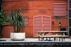 Uteplats med bänken och palmträdet Royaltyfria Foton