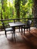Uteplats med naturlig tropisk skogsikt Arkivbild